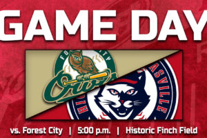HiToms Face Owls in Independence Day Clash